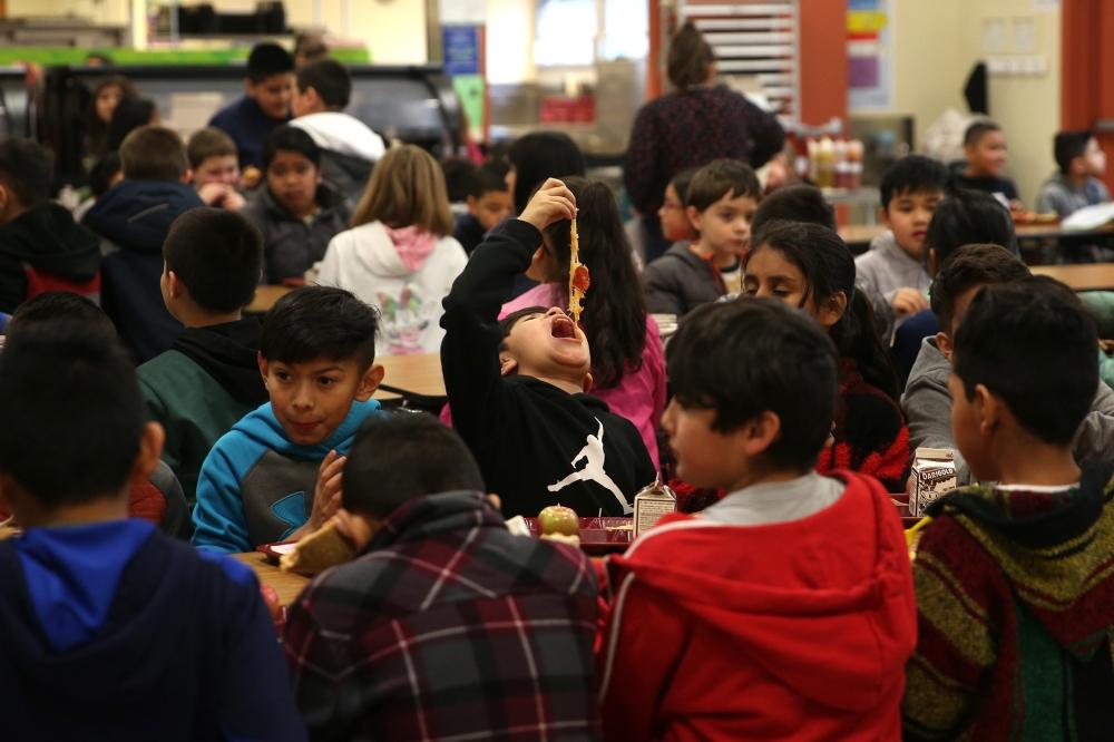 Meal photos elementary school_mr11